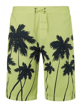 Coconut Palms Print Drawstring Board Shorts - Xs